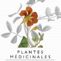 Les plantes médicinales : tradition culturelle et recherche de pointe