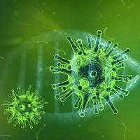 Coronavirus : quelques pistes éducatives en Santé Environnement